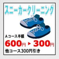 仕立て直し 靴毛 皮修理 修繕 シミ 防虫 抗菌 除菌